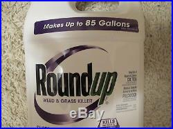 Roundup Super Concentrate Weed & Grass Killer 5004215-sale fast ship